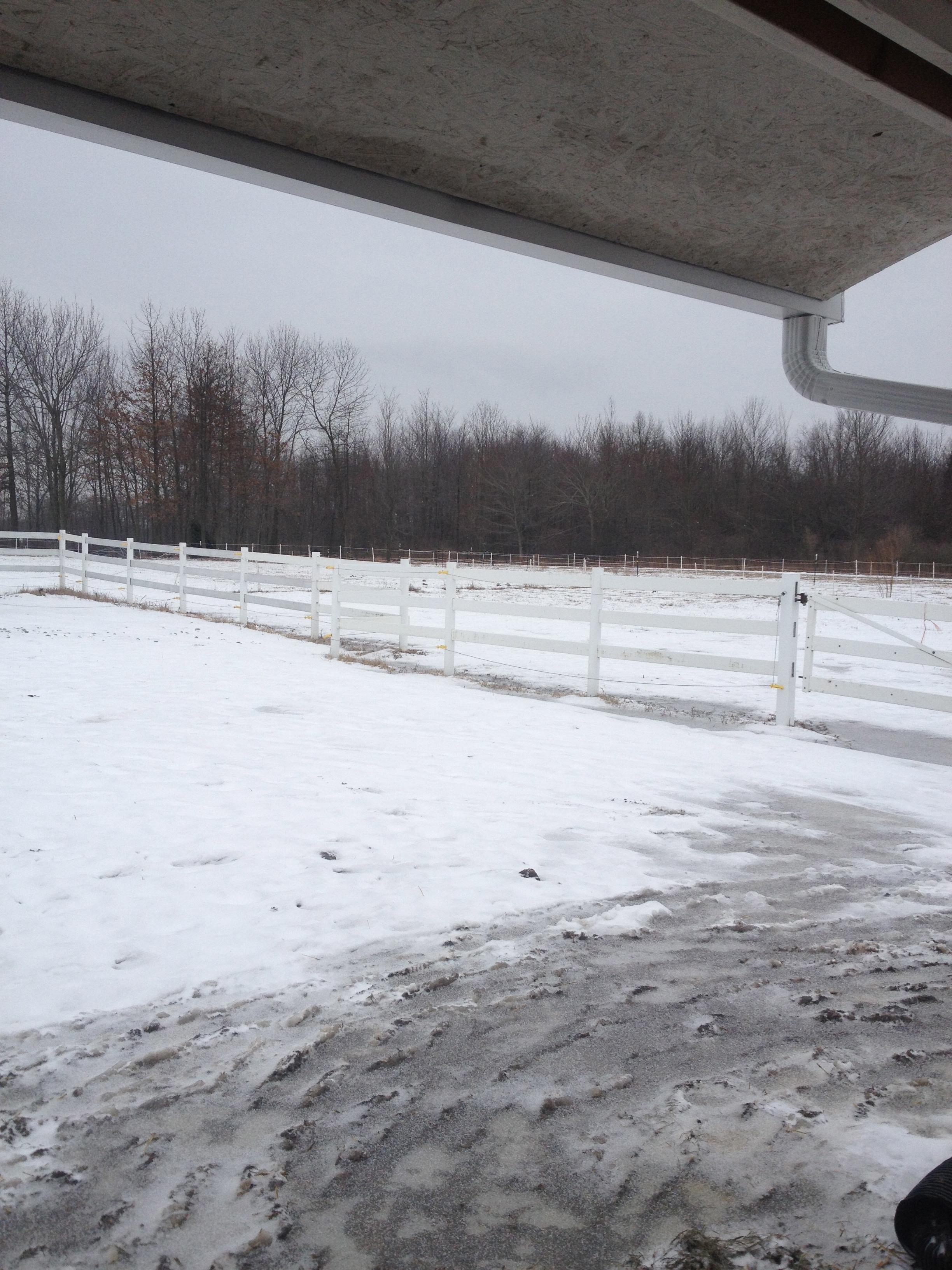 Pastures of snow